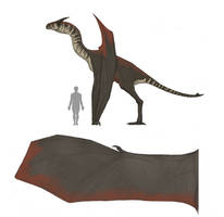 SpecEvo Redesigns: Prehistoric Dragon