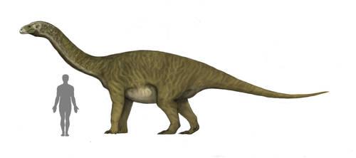 Vulcanodon karibaensis