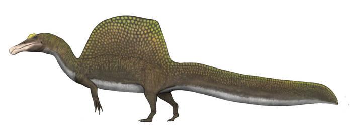 Spinosaurus aegyptiacus v4