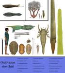History size chart: Ordovician