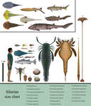 History size chart: Silurian