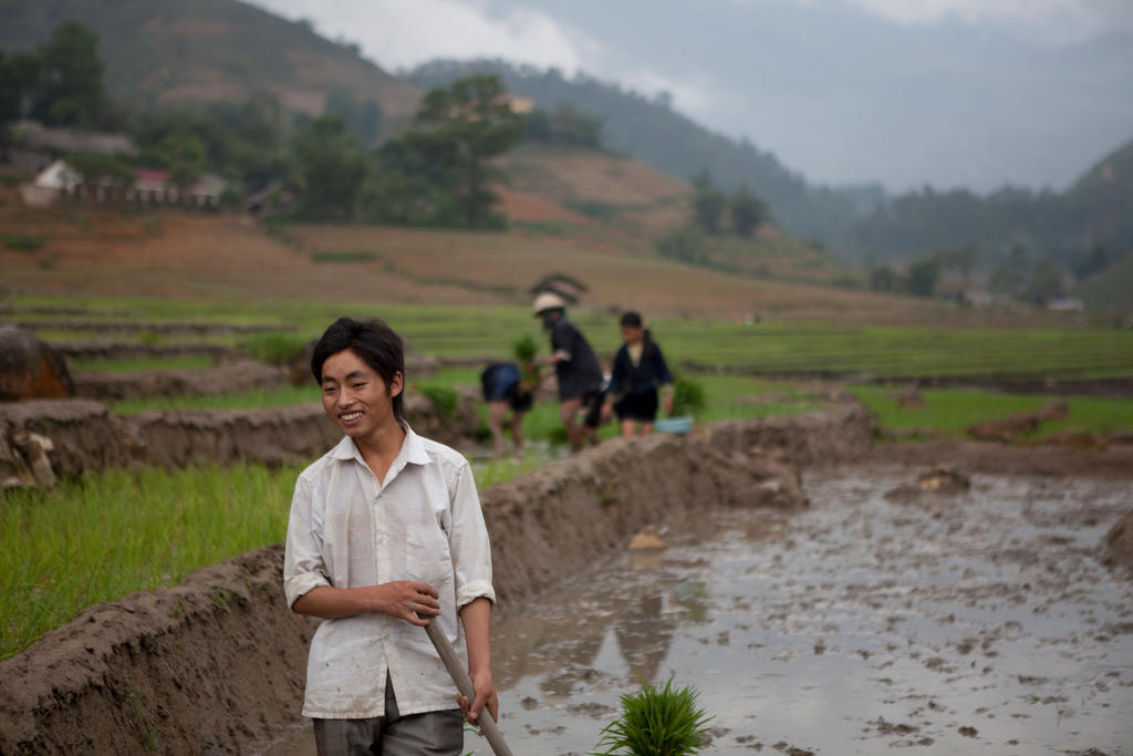 Happy Farming in Sapa by Solarstones
