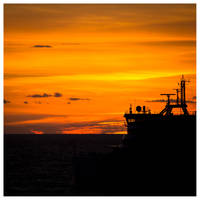 Golden silhouette. by DrDrum666