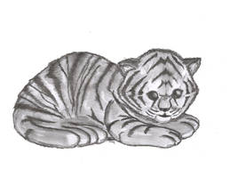 Tigrisor by cedik