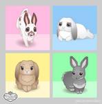Budget Bunny -Update-