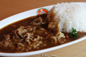 Beef Curry Rice by viennidemizerable