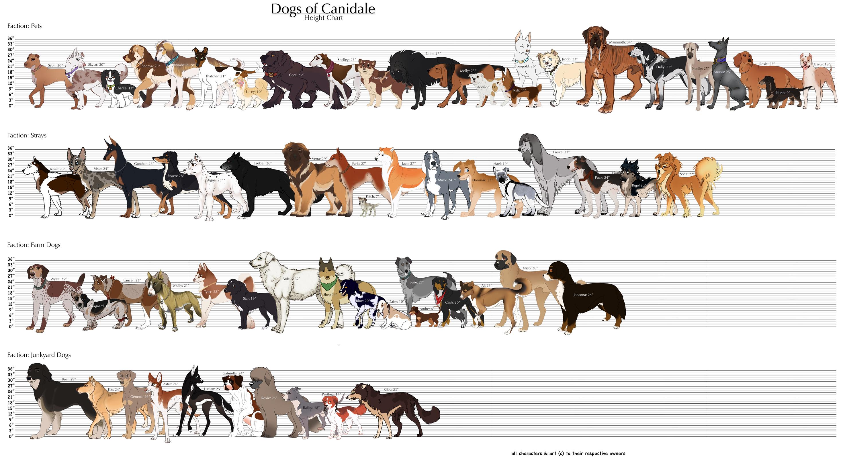 dog size diagram everything wiring diagram Dog Behavior Diagram