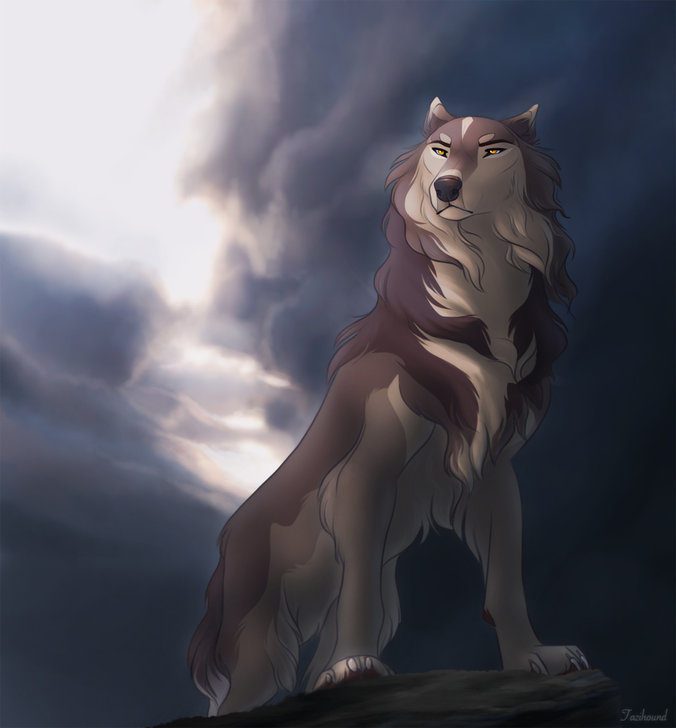 anime wolf images: Limited Spots