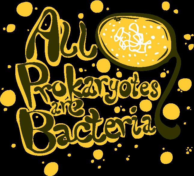 all prokaryotes are bacteria by Mackeriffic