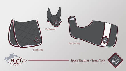 Space Shuttles - Team Tack by HCLofficial