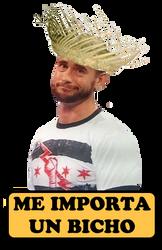 CM Punk: Me importa un bicho by Othienka
