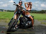 Harley Davidson-RoadrageCycles