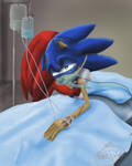 Injured Sonic