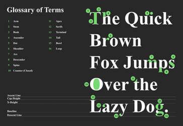 Anatomy of Type by shesta713