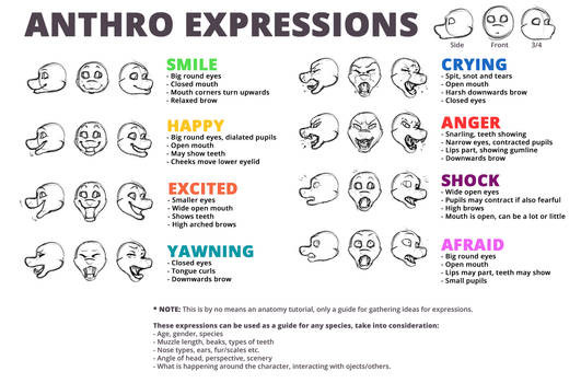 Anthro Expressions