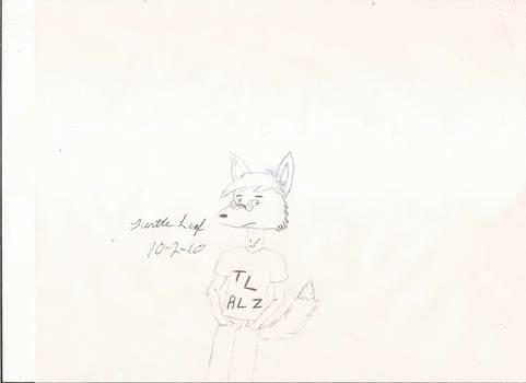Turtleleaf Sketch