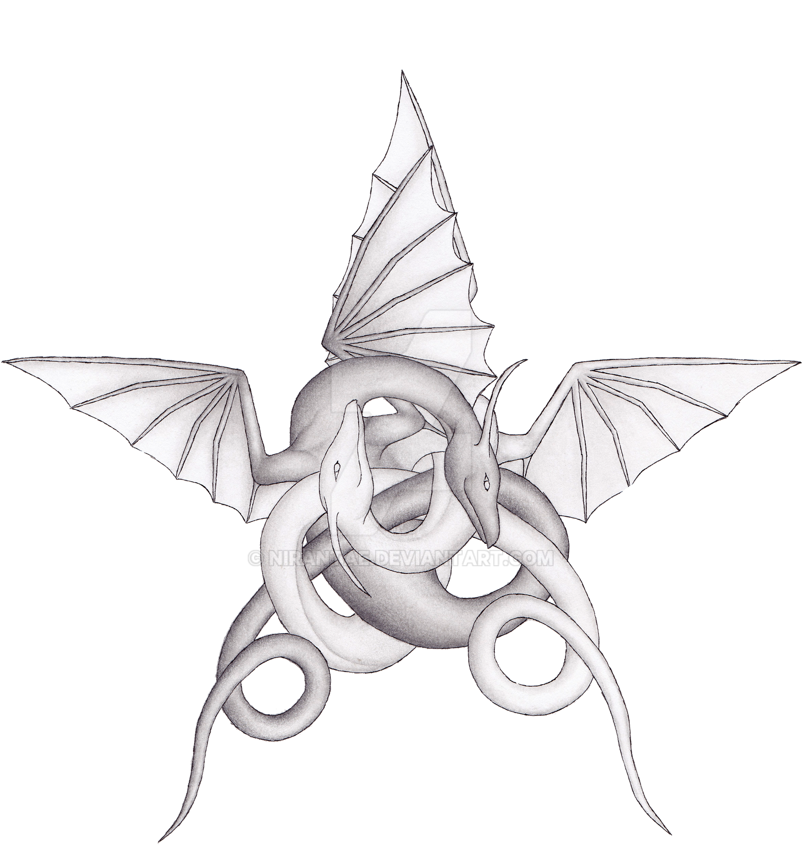 dragon pentagram by nirantae on deviantart