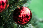 Christmas Reflexion