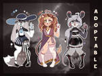 Adopts OPEN by MONRAYD