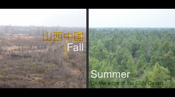 Gobi Desert - Summer and Fall by asht0n112358