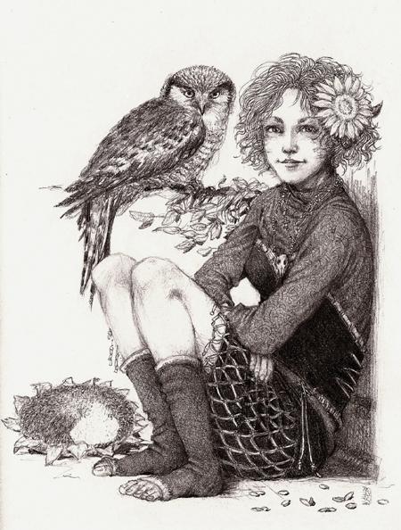 Northern Hawk-Owl by Nawia