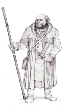 Marwyn the Mage