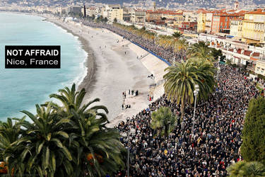 NOT AFFRAID   Nice, France by ookamedias