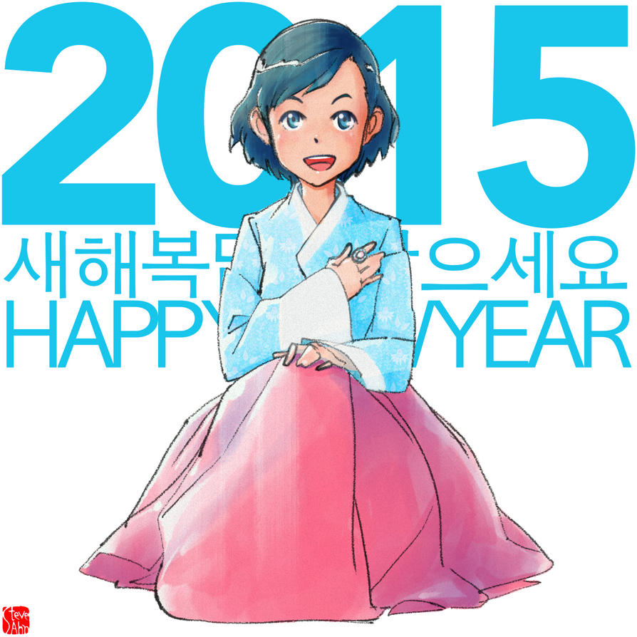 2015 Happy New Year by SteveAhn