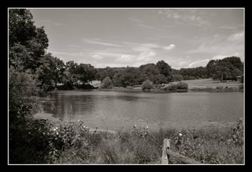 Holmdel Park by sarsgaard