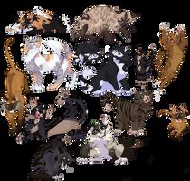 Cat Batch 9-13 Septembre 2020