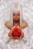 Rose by coreyart7