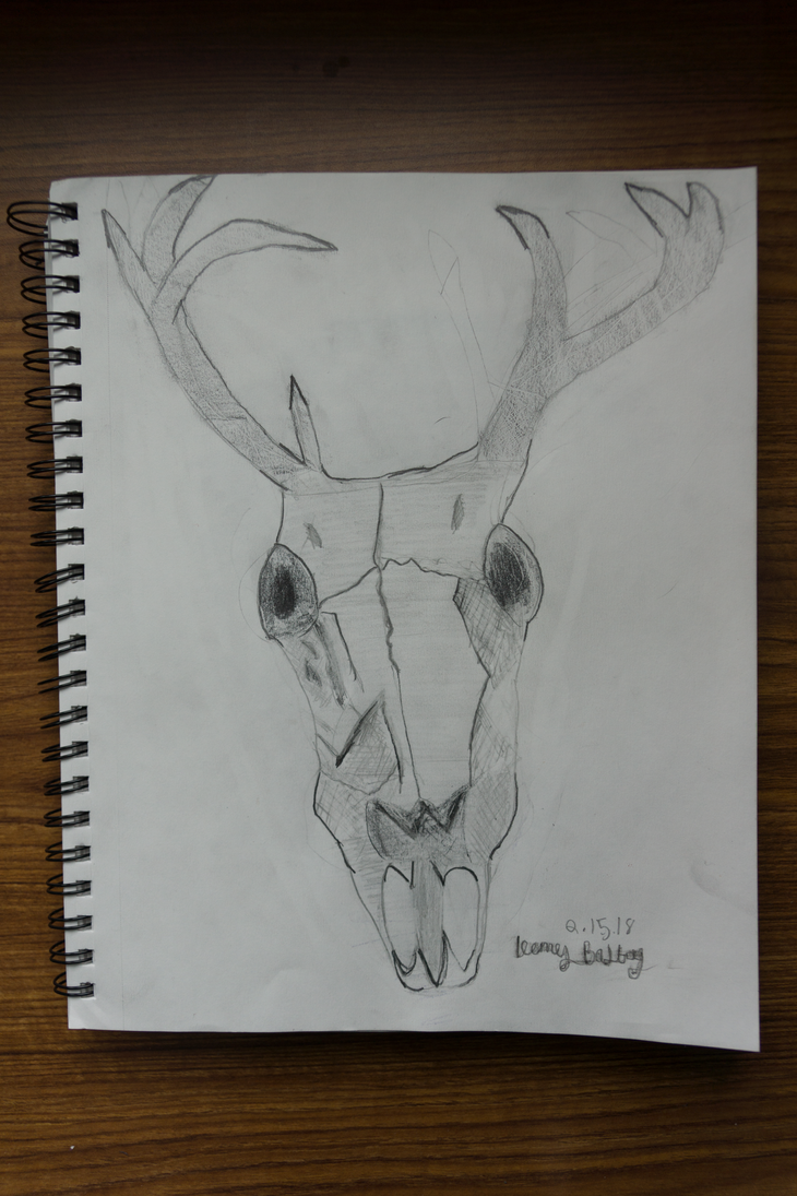 -- buck off, a deer skull drawing by Cue-the-Cannibal