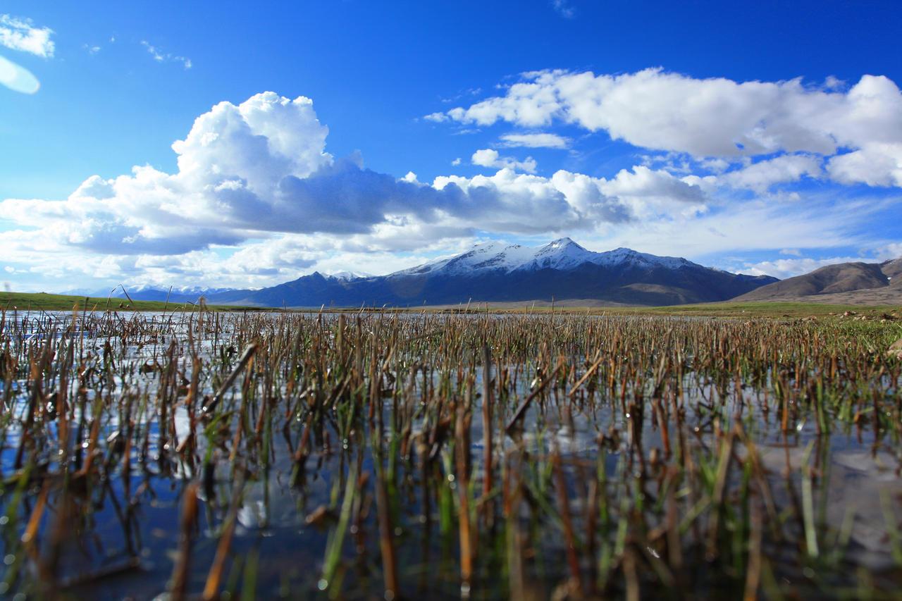 In Tibet by ypf