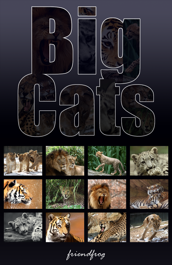 Big Cats Calendar by FriendFrog