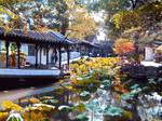 Chinese Garden Suzhou