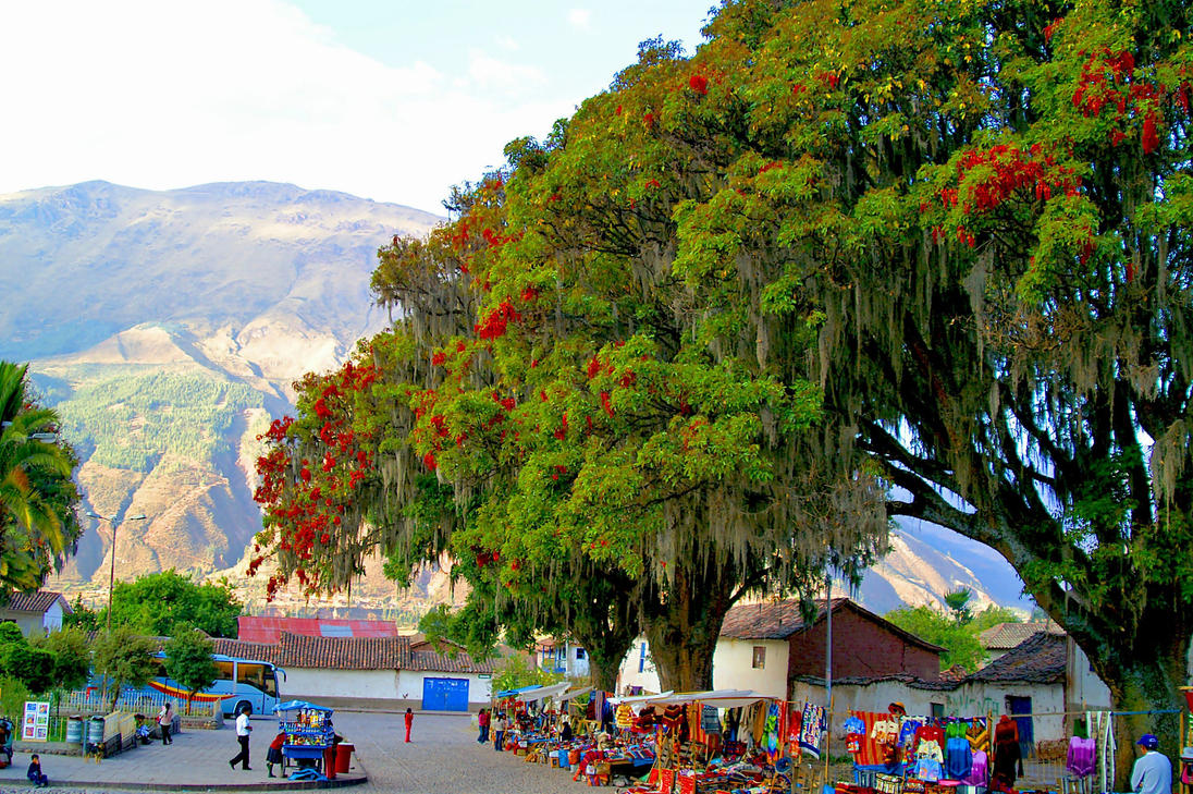Somewhere in Peru 13 by CitizenFresh