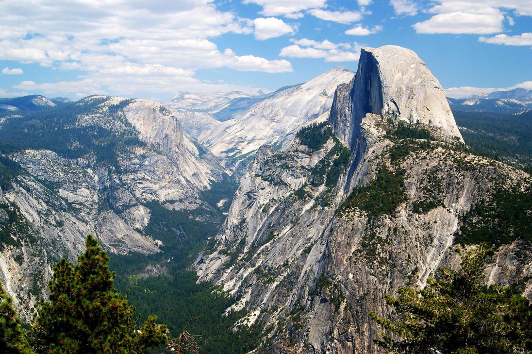 探险之旅 - 优胜美地国家公园 - 阿华 - 跨海的树