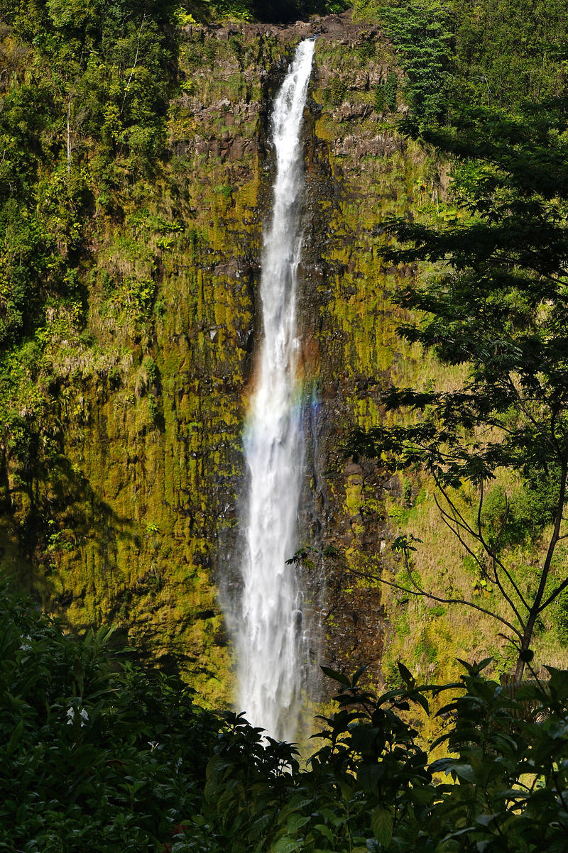 Rainbow Fall  Hawaii by CitizenFresh