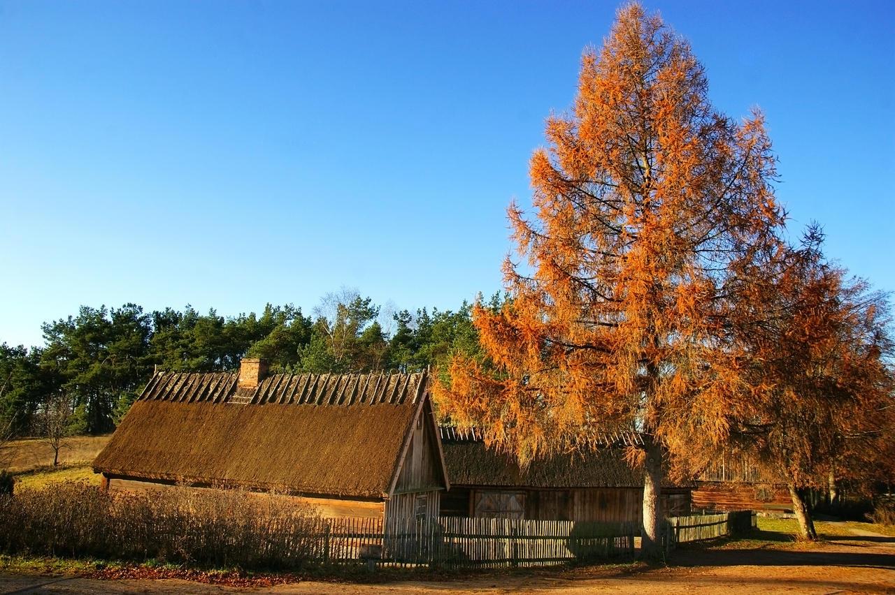 Autumn view 2 by CitizenFresh