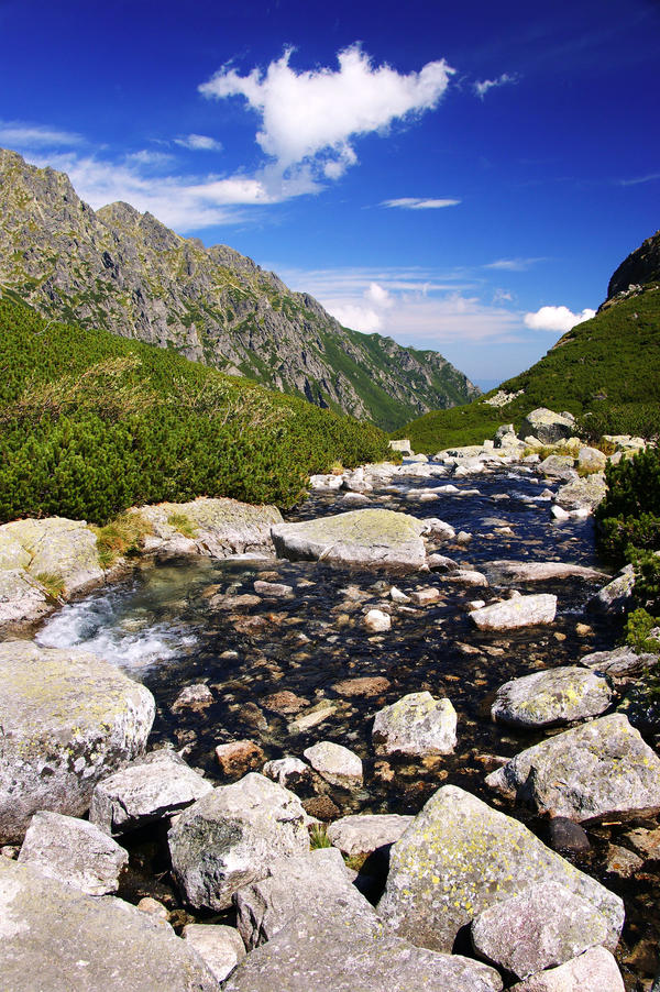 stream in the mountains - photo #30