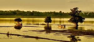 Golden Myanmar by CitizenFresh