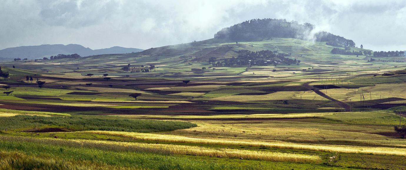 Beautiful Ethiopia 5 by CitizenFresh