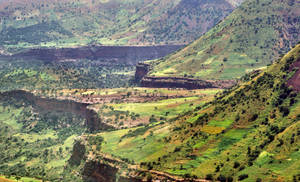 Beautiful Ethiopia 13 by CitizenFresh