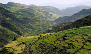 Beautiful  Ethiopia 19 by CitizenFresh