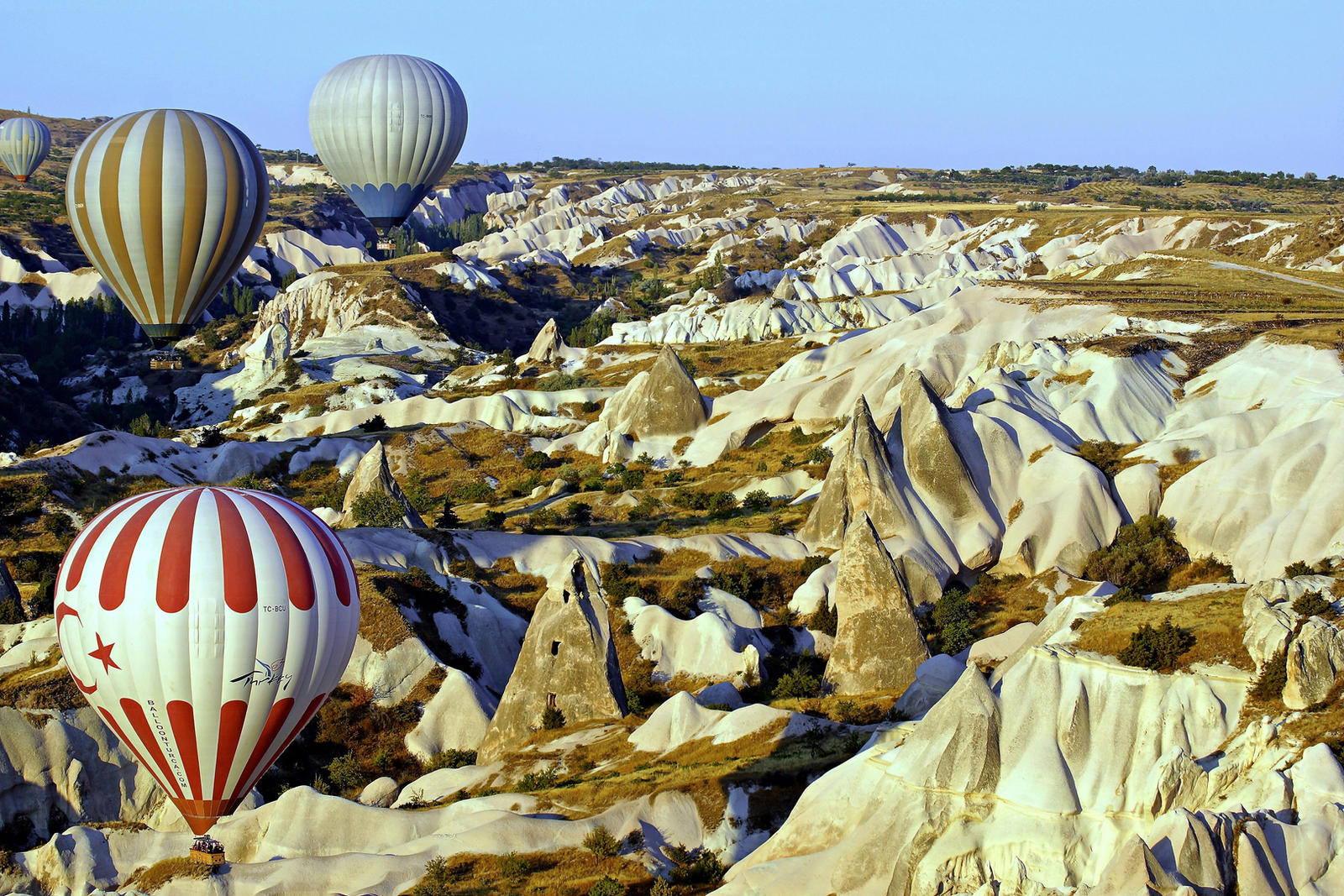 Balloons over Cappadocia 10 by CitizenFresh