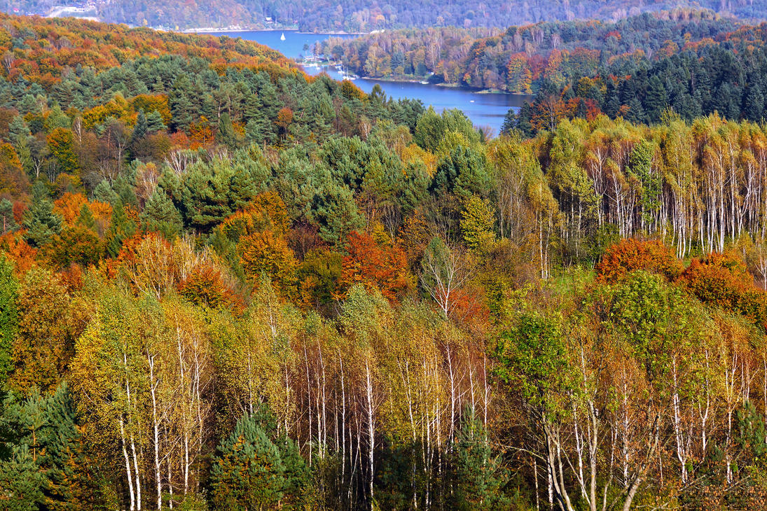 Autumn in Solina by CitizenFresh