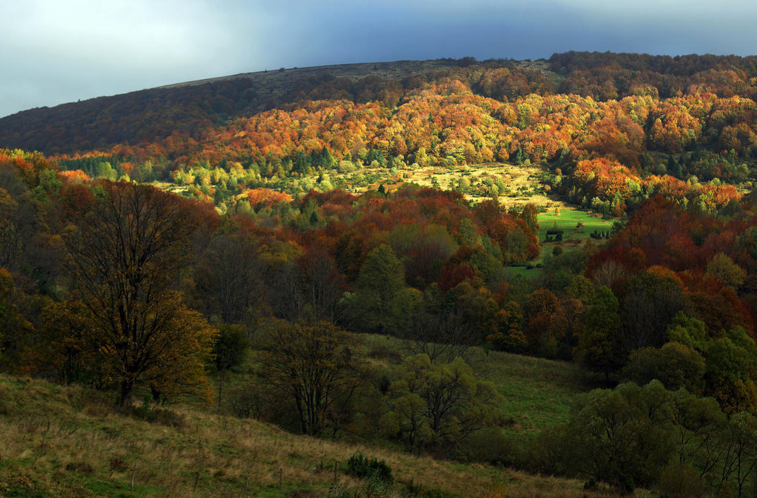 Autumn in Bieszczady 2 by CitizenFresh