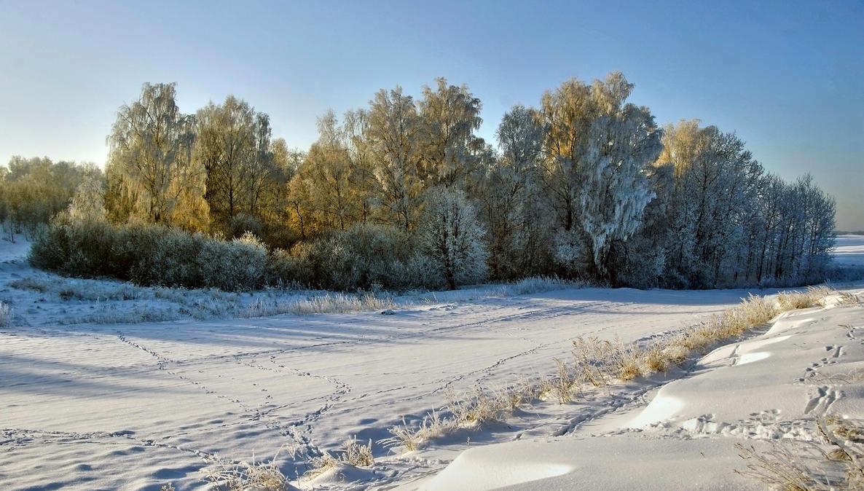 Winter Time 5 by CitizenFresh
