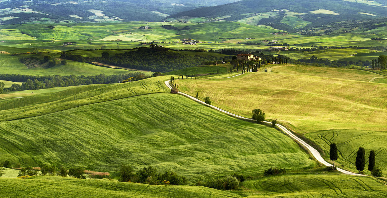 Gladiator Road to Villa,Tuscany by CitizenFresh