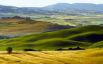 Val d'Orcia  16